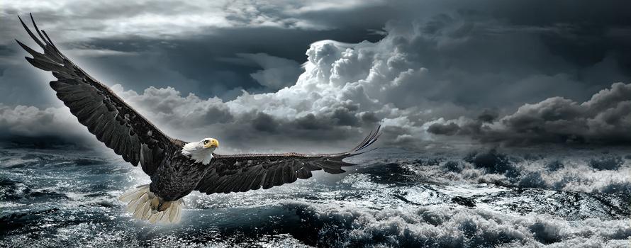 Auch in stürmischen Zeiten